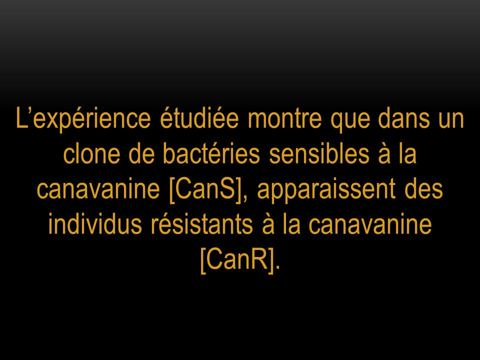 L'expérience étudiée montre que dans un clone de bactéries sensibles à la canavanine [CanS], apparaissent des individus résistants à la canavanine [CanR].